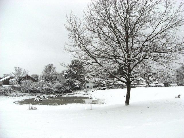 Bradmore Pond