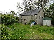 G8078 : Old Dwelling at Coolshangan by louise price