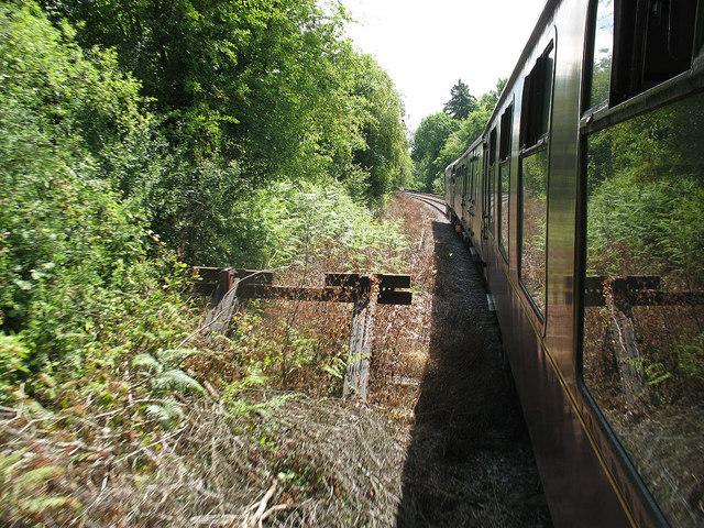 Overgrown siding outside Eridge station