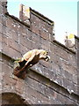 SO7299 : Gargoyle on the west side of the church (1) by Richard Law