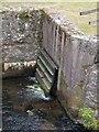 SX8178 : Outflow, Bovey Bridge by Derek Harper