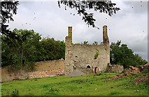 N1729 : Castles of Leinster: Castlearmstrong, Offaly (2) by Mike Searle