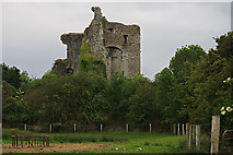 N5712 : Castles of Leinster: Lea, Laois (2) by Mike Searle