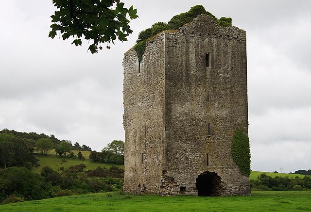Castles of Leinster: Gortnaclea, Laois