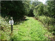 SO5158 : Waymarker post on the footpath near Westeaton, Leominster by Jeremy Bolwell