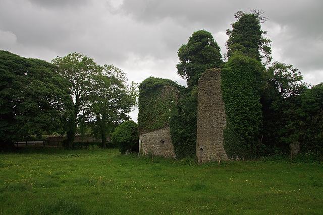 Castles of Leinster: Castle Jordan, Meath (3)