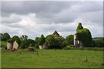 N1201 : Castles of Leinster: Ballymooney, Offaly by Mike Searle