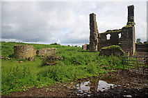 S1799 : Castles of Leinster: Newtown, Offaly by Mike Searle