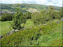 SE0125 : Hebden Royd Footpath 63, Mytholmroyd by Humphrey Bolton