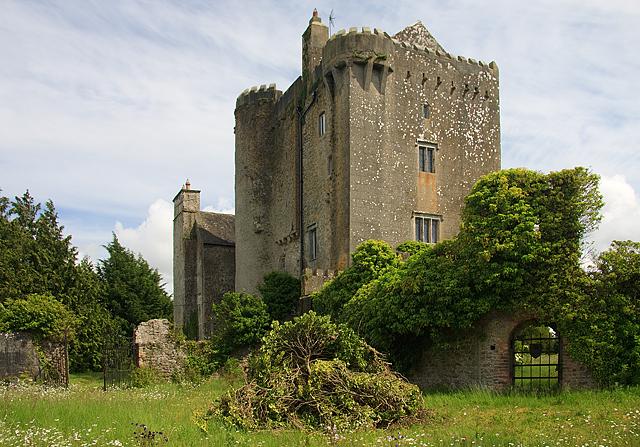 Castles of Leinster: Emmel, Offaly (1)