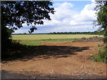 TG0524 : New entrance off Reepham Road by Geographer