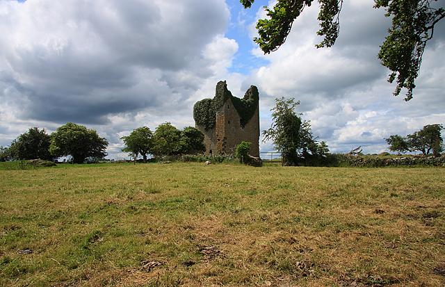 Castles of Leinster: Martinstown, Westmeath (1)
