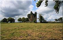 N6060 : Castles of Leinster: Martinstown, Westmeath (1) by Mike Searle