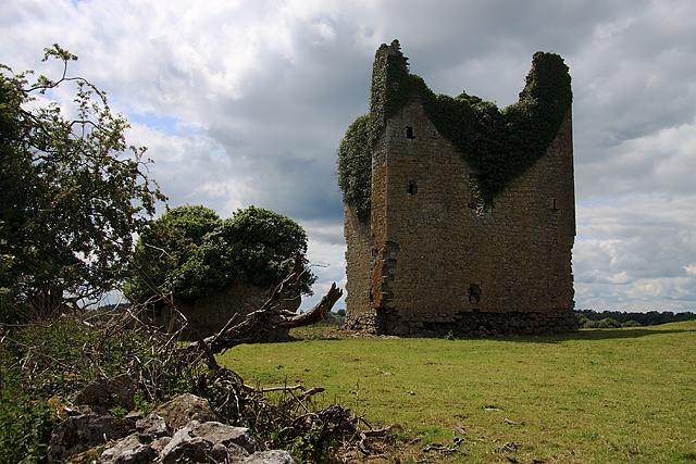 Castles of Leinster: Martinstown, Westmeath (2)