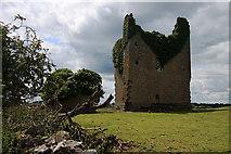 N6060 : Castles of Leinster: Martinstown, Westmeath (2) by Mike Searle