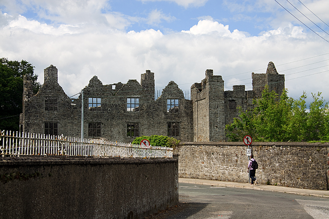 Castles of Leinster: Athlumney, Meath (1)
