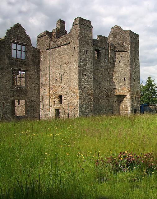Castles of Leinster: Athlumney, Meath (2)