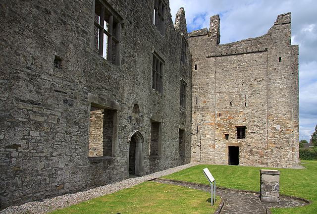 Castles of Leinster: Athlumney, Meath (3)