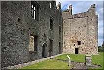 N8767 : Castles of Leinster: Athlumney, Meath (3) by Mike Searle