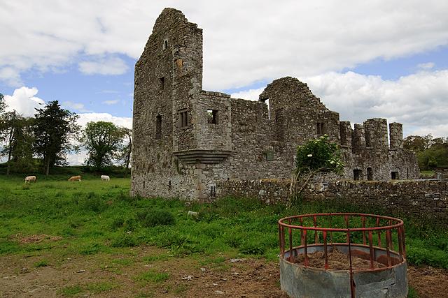 Castles of Leinster: Robertstown, Meath