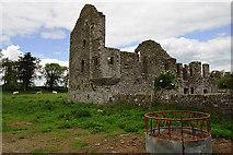 N7884 : Castles of Leinster: Robertstown, Meath by Mike Searle