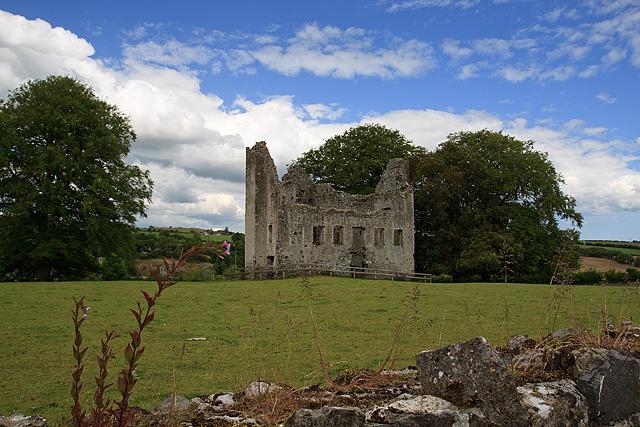 Castles of Leinster: Fennor, Meath (2)