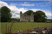 N9673 : Castles of Leinster: Fennor, Meath (2) by Mike Searle