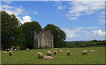 N9673 : Castles of Leinster: Fennor, Meath (3) by Mike Searle