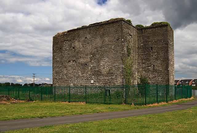 Castles of Leinster: Woodstock, Kildare