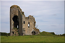 S1971 : Castles of Munster: Tullow, Tipperary (2) by Mike Searle