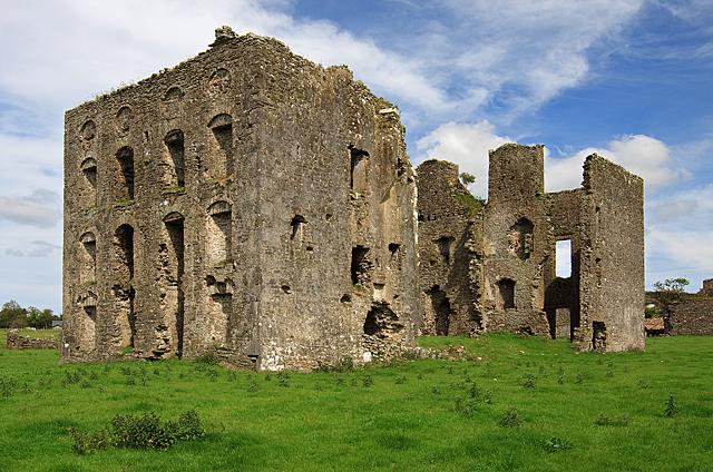 Castles of Munster: Ballynakill, Tipperary (1)