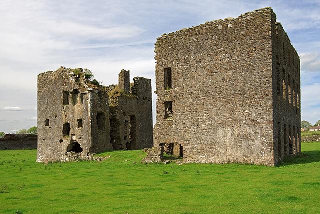 Castles of Munster: Ballynakill, Tipperary (2)