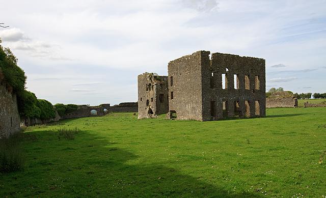 Castles of Munster: Ballynakill, Tipperary (3)