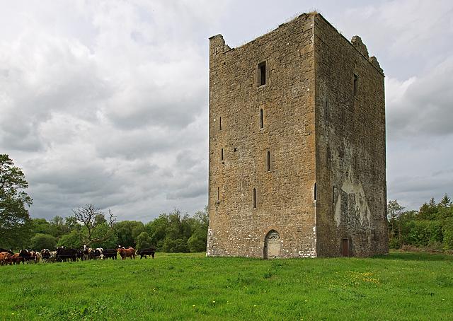 Castles of Leinster: Foulkscourt, Kilkenny (1)