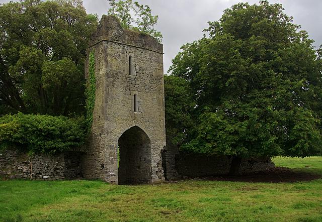 Castles of Leinster: Foulkscourt, Kilkenny (3)