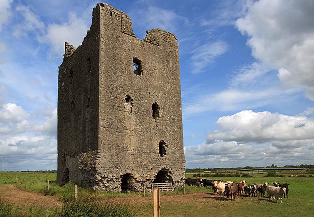 Castles of Leinster: Rattin, Westmeath (2)