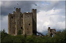 N8056 : Castles of Leinster: Trim, Meath (5) by Mike Searle