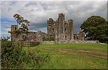 N8559 : Castles of Leinster: Bective, Meath (2) by Mike Searle