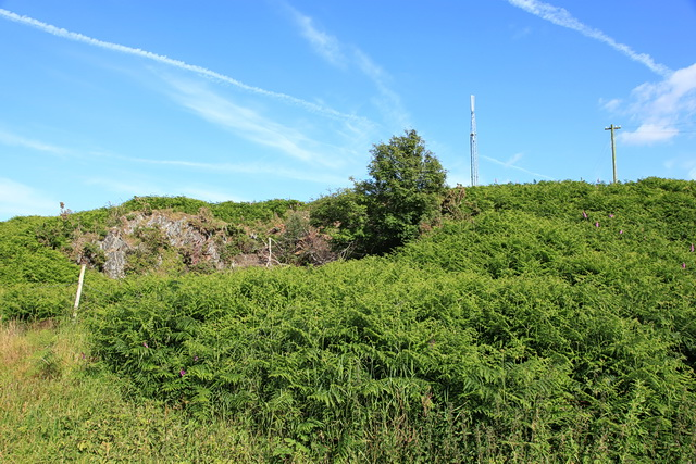 Waitham Hill