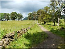 NS5379 : The West Highland Way near Easter Carbeth by Lairich Rig