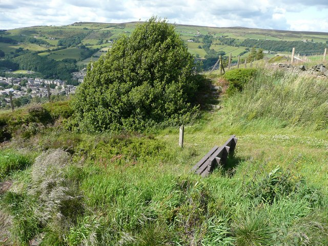 Seat and steps, Stake Lane, Mytholmroyd