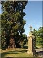 SP2852 : Gatepost, Walton Hall by Derek Harper