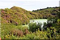 SX0055 : Lansalson Pit at Wheal Martyn by Steve Daniels