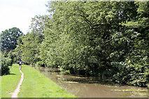 TL3707 : The New River, Broxbourne, Hertfordshire by Christine Matthews