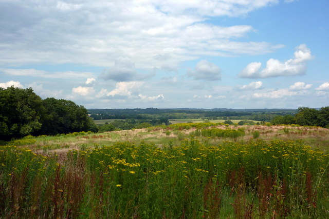 Field on Ouse Valley Way