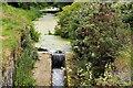 J1264 : Disused Lagan canal. Aghalee (2) by Albert Bridge