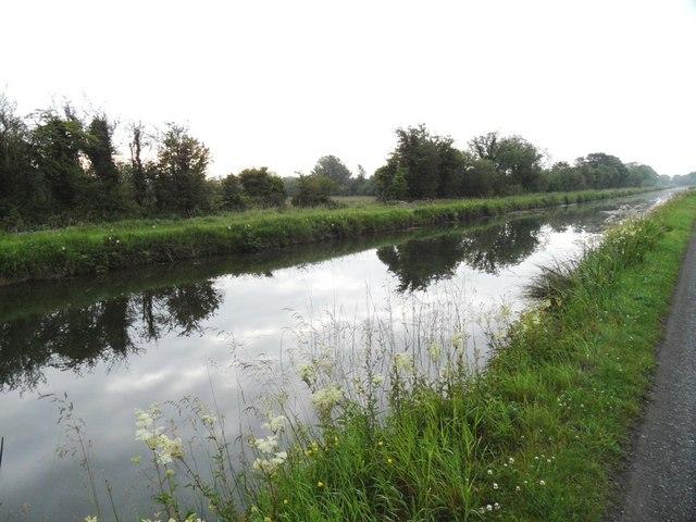 Grand Canal near Hamilton's Bridge, Co. Kildare