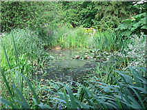 TQ6927 : Pond at King John's Garden by Oast House Archive