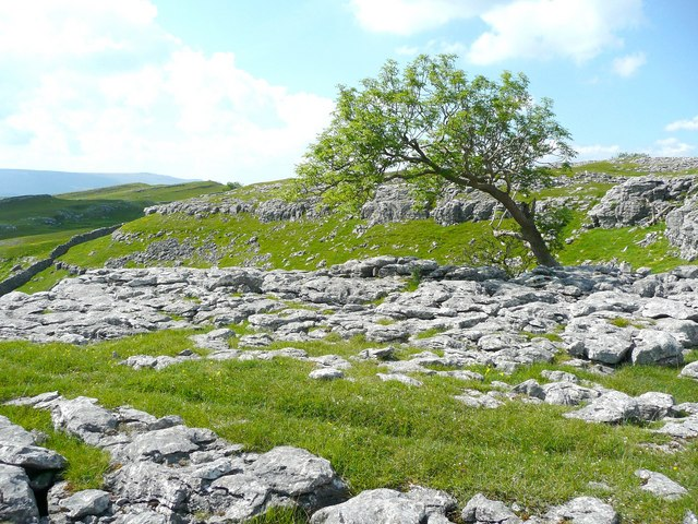 Limestone scar and boulder-field, Old Pasture