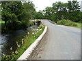 SN0819 : Gelli Bridge by Jeremy Bolwell